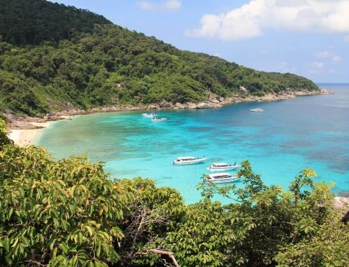 Как выбрать тур в Таиланд и не прогадать?